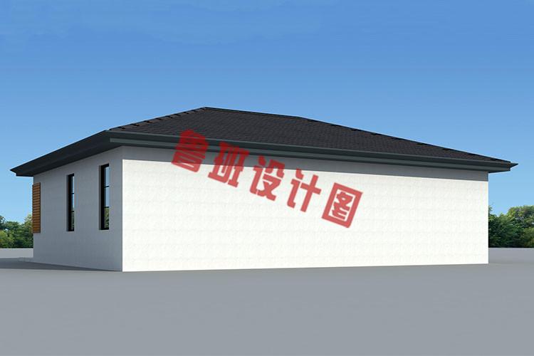 农村10万元一层小别墅外观图片