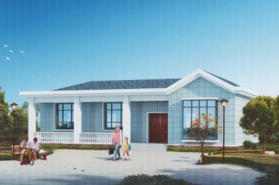 一层普通自建房户型图,一层别墅图精选