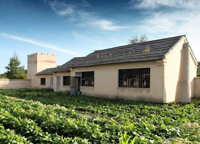 为什么农村有些自建房刚建好墙体就开裂?涨知识了
