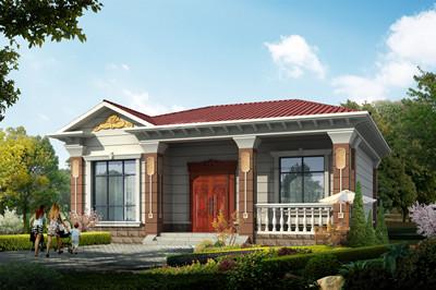 农村一层别墅房子户型图,简单实用大气,外观图精致漂亮