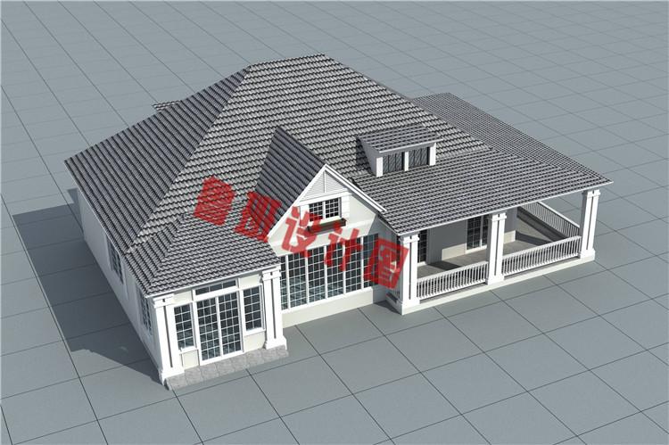 新式农村一层带阁楼别墅设计外观图