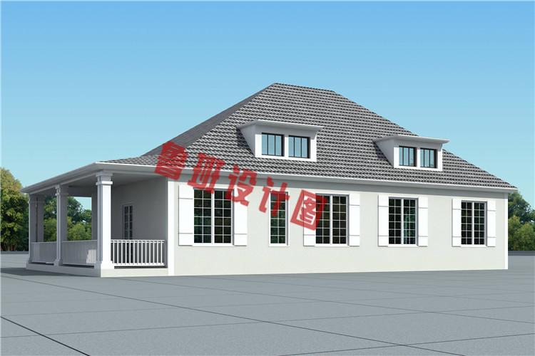 新式农村一层带阁楼别墅设计图片