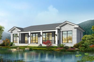 新农村一层双拼别墅平房设计图,外观清新亮眼