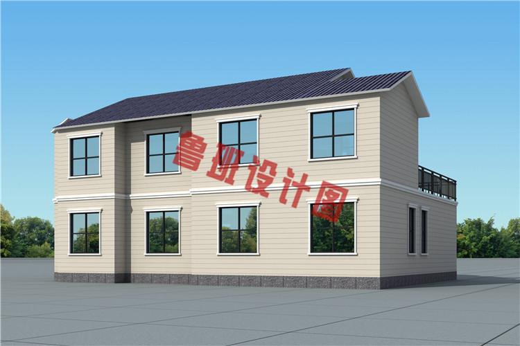 农村新款二层带车库别墅设计背面图