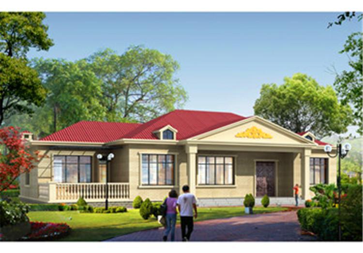 农村养老房别墅设计图,简单大气,养老房还是一层的好